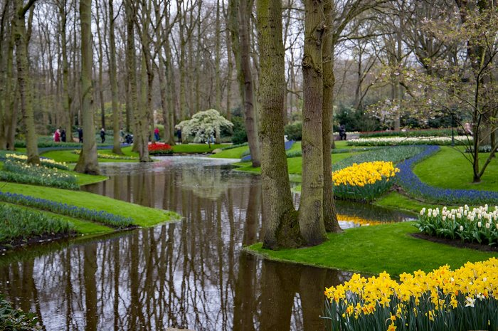 Keukenhof - Lisse - Places to visit in the Netherlands