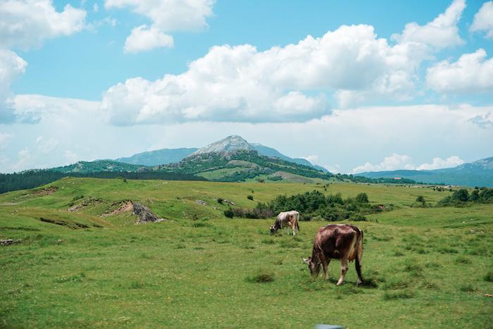 Lovely landscape in Bosnia-Herzegovina along the way - road trip itinerary