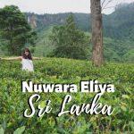 Places to Visit in Nuwara Eliya - Sri Lanka's Misty Waterfall Paradise