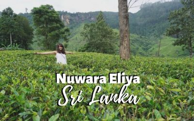 Places to Visit in Nuwara Eliya – Sri Lanka's Misty Waterfall Paradise