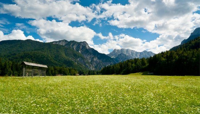 Planica Tamar, Slovenia